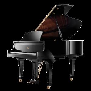 Pianoforte Essex EGP_173C - Alberto Napolitano Pianoforti Napoli