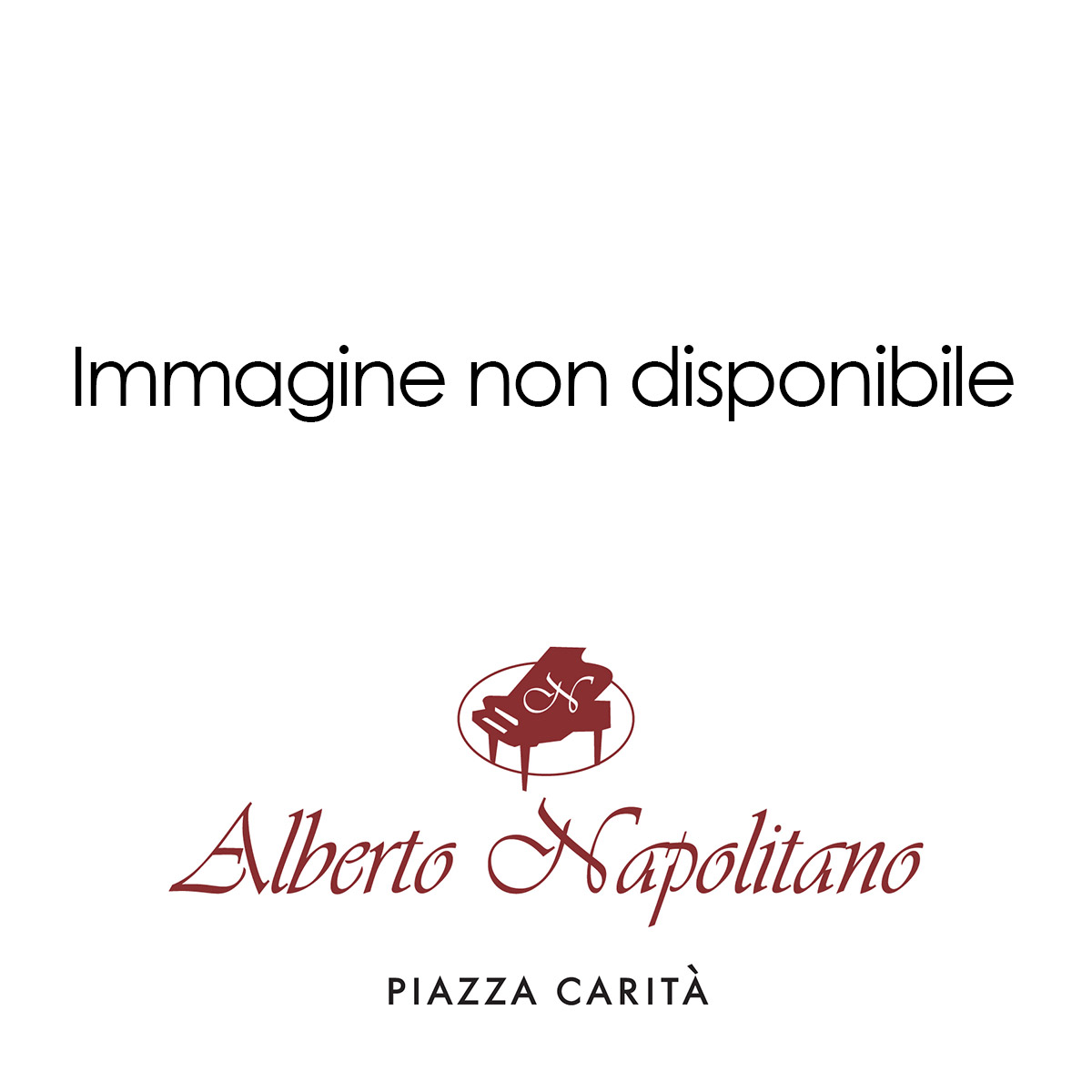 Immagine non disponibile - Alberto Napolitano Pianoforti Napoli
