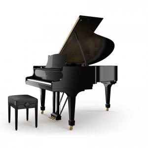 Pianoforte Steinway A-188 Alberto Napolitano Pianoforti Napoli