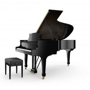 Pianoforte Steinway B-211 Alberto Napolitano Pianoforti Napoli