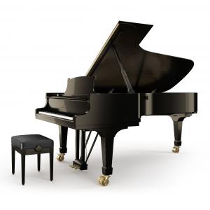 Pianoforte Steinway C-227 Alberto Napolitano Pianoforti Napoli