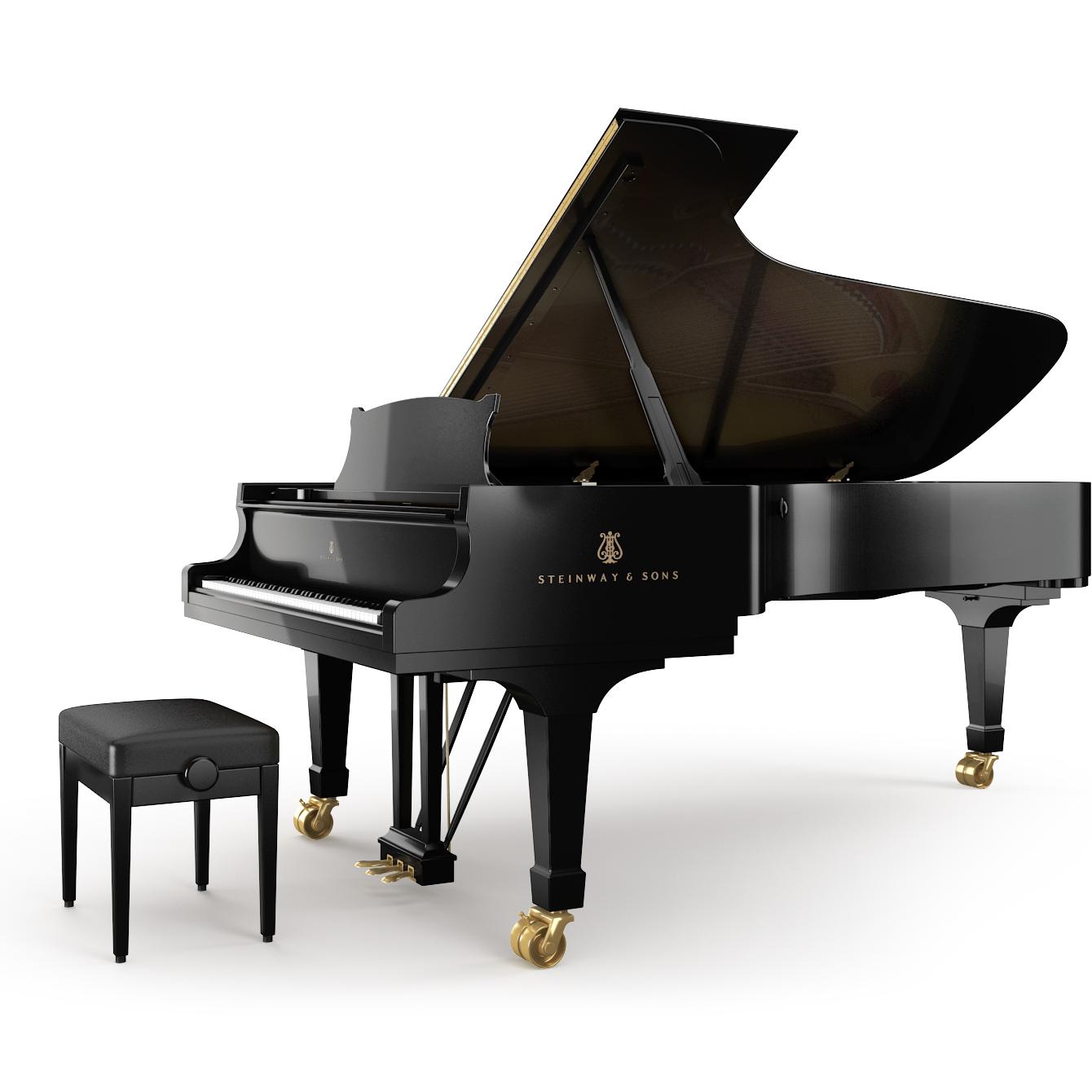 Pianoforte Steinway D-274 - Alberto Napolitano Pianoforti Napoli