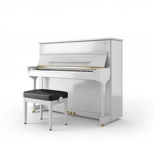 Pianoforte Steinway V-125 - Alberto Napolitano Pianoforti Napoli